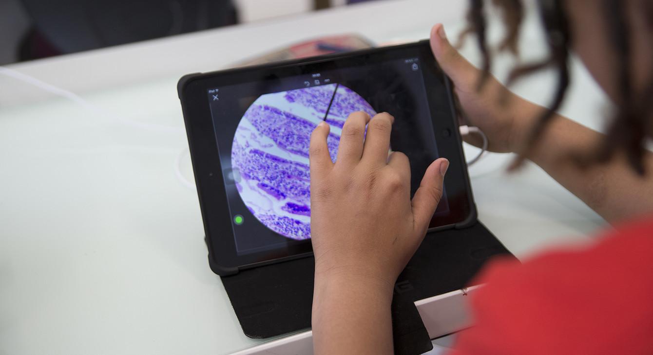 Etats Généraux du Numérique pour l'Education, vers le numérique éducatif de demain